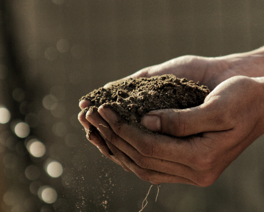 Inspired Kitchen March: Regenerative Agriculture